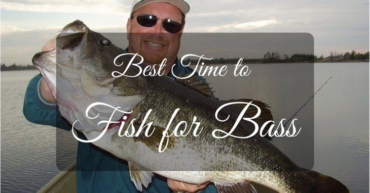 When is the Best Time to Fish for Bass