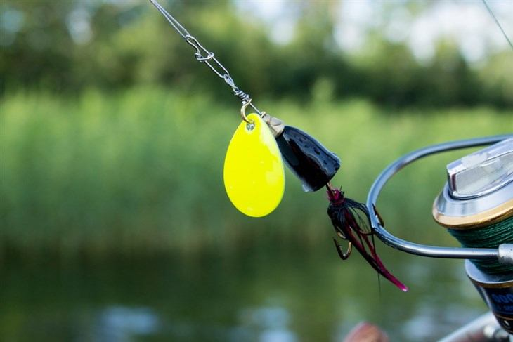 What Are Spinnerbaits - best spinnerbait reviews