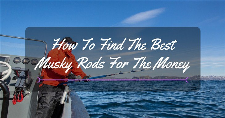 best musky rod reviews