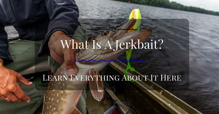 what is a Jerkbait