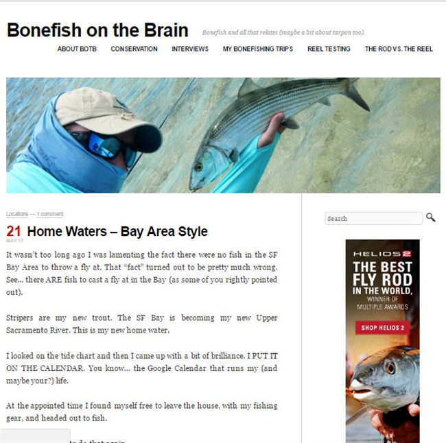 Bonefish on the Brain