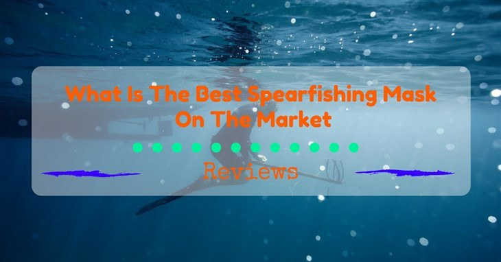 Best Spearfishing Mask Reviews