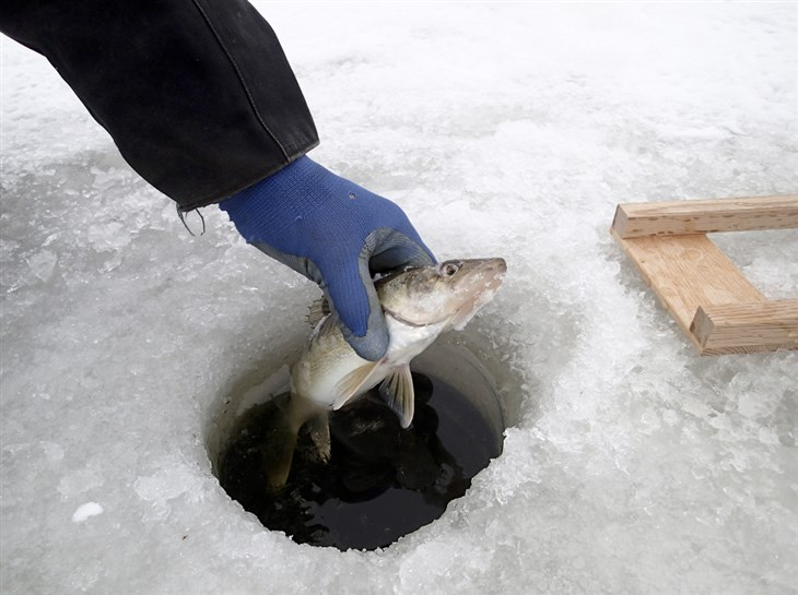 What To Look For In An Ice Fishing Glove
