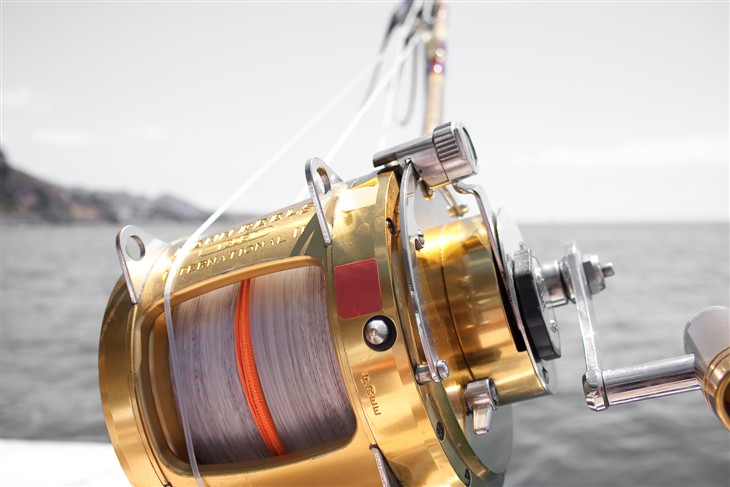 Why Get a KastKing Reel?