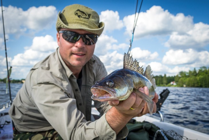 What To Look For When Searching For The Best Walleye Rod