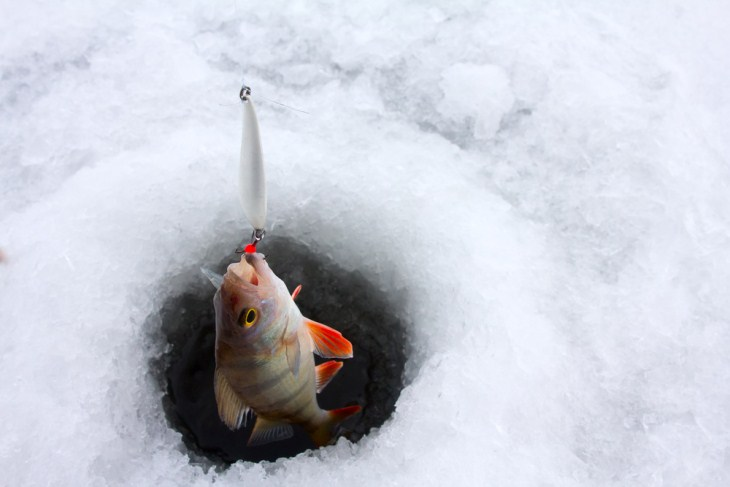 How to ice fish efficiently for novices for How to ice fish