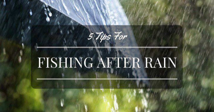 fishing after rain