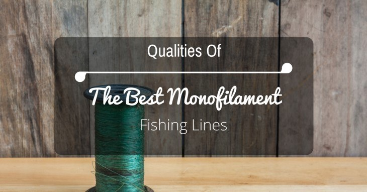 Best Monofilament Fishing Lines Reviews
