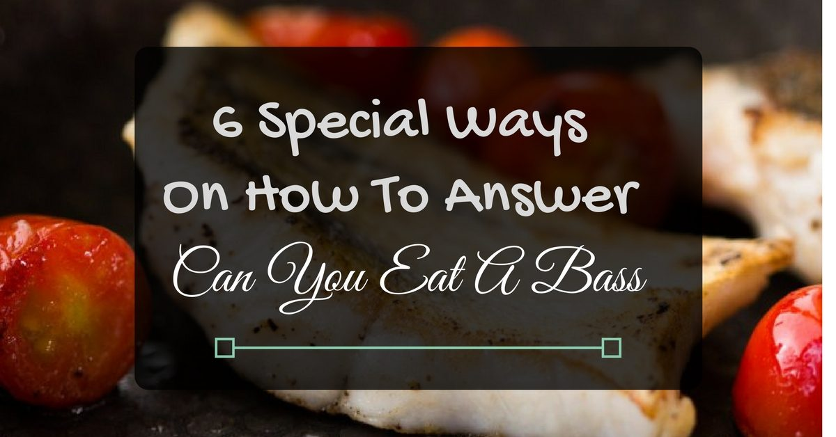 Can You Eat A Bass'