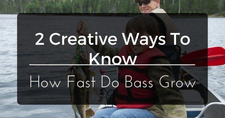 How Fast Do Bass Grow
