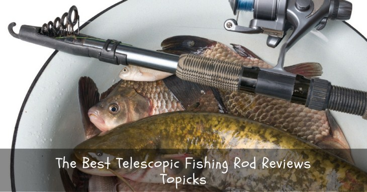 The Best Telescopic Fishing Rod Reviews