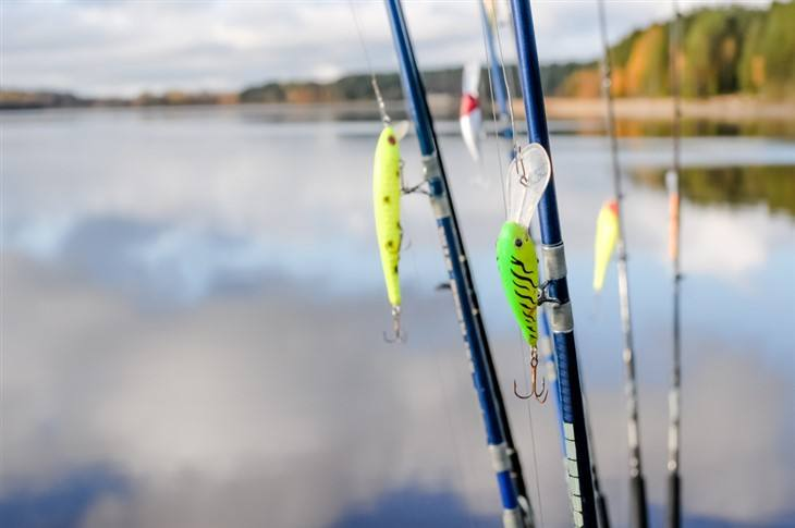 What Does A Crankbait Really Mean