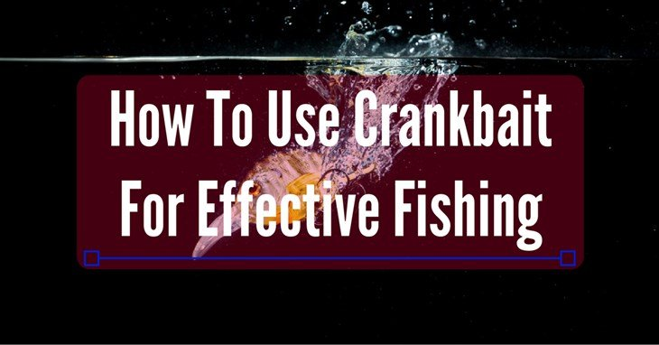 How To Use CrankbaitFor Effective Fishing