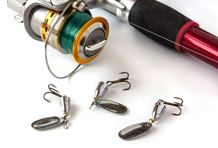 What To Look For In A Spinnerbait Rod