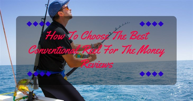 best conventional reel reviews