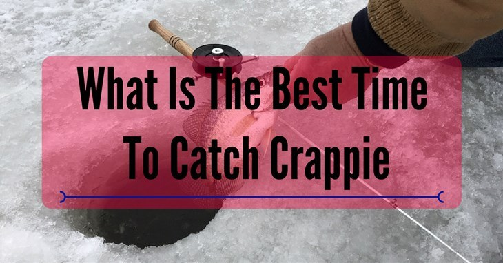 best time to catch crappie