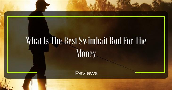 Best Swimbait Rod Reviews