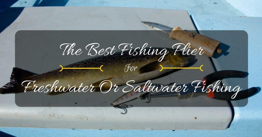 best fishing plier reviews